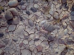 stones in dry mud (EllenJo) Tags: pentaxqs1 october17 2016 ellenjo ellenjoroberts pentax