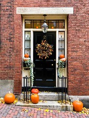 A Door On Acorn Street ((Jessica)) Tags: boston autumn massachusetts newengland pumpkin brownstones historic fall door beaconhill acornstreet