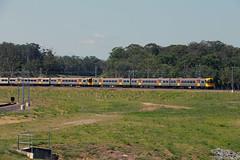 LNP Land Sale (jamesmp) Tags: queenslandrail qr walkersltd asea electricmultipleunit emu electrictrain suburbantrain petrie queensland australia