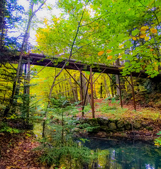 A bridge in forest (Matthieu Toulemonde) Tags: autumn gap france forest trees bridge domaine charance free picture