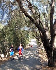 037 Heading For The Finish (saschmitz_earthlink_net) Tags: 2016 california orienteering topangacanyon statepark laoc losangelesorienteeringclub losangeles losangelescounty santamonicamountains