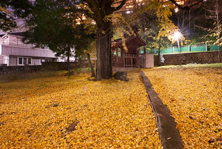 Yellow Carpet