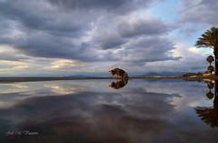 Espejo, espejito/ Mirror, mirror (josemanuelvaquera) Tags: reflejos mar agua mascotas nubes cielos