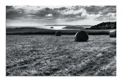 Prés en bulles (Voyage Au delà d'un Regard) Tags: bretagne breizh finistère pennarbed paysage moisson paille balledefoin