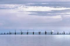 La lune dans le filet (Ma Poupoule) Tags: asie asia malaisie sarawak lune moon plage sea mer cloud clouds nuages kuching