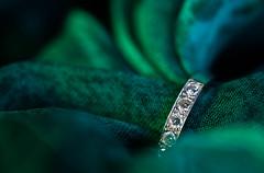 Where's Lucy? (PhilR1000) Tags: diamonds ring silver beatlesbeetles macromondays thebeatles lucyintheskywithdiamonds songtitle macro lyrics green eternity