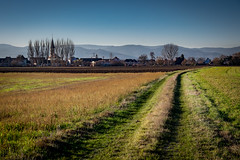 Bischwihr et son église (Clydomatic) Tags: village église arbres vosges montagne