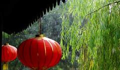 Rain (mdp10yy) Tags: watertown china suzhou jiangnan