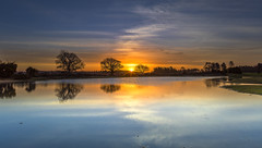 Mogshade Sunrise (nicklucas2) Tags: landscape newforest pond grass nature reflection sunrise tree mogshade cloud