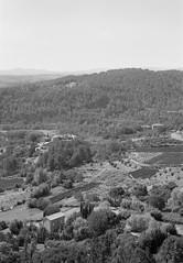 Near Sanilhac, France (kleinbatavia) Tags: blackandwhite bw france rodinal largeformat ardeche 5x7 fomapan 13x18 epsonv700