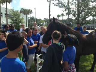 2015 - 4th & 5th Grade May 14, 2015 Odyssey Preparatory Academy, Palm Bay, FL with Wild Horse Rescue Center