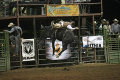 Turquoise Circuit Finals Rodeo (antelopewells) Tags: rodeo bronc