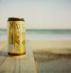Extra Gold (davebias) Tags: beach polaroid sx70 fireisland davispark polaroid600film roidweek2015 autumnroidweek2015