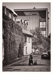 Altstadt (georgsfoto) Tags: blackandwhite bw monochrome digital altstadt rostock heimat schwarzweis croppedabit nikond750 seriese10028