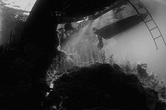 Capernwray-201507-22-UnderTheboat-BW (Tony J Gilbert) Tags: underwater diving lancaster underwaterphotography capernwray overkellet underwaterphotographer 105mmlens nikond300 jackdawquarry divingquarry wwwdivesitecouk capernwrayquarry
