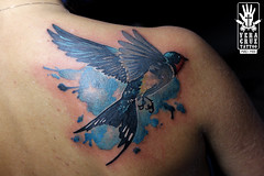 bluebird (Veracruz Tattoo) Tags: tattoo watercolor swallow rondine