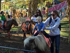 """Paul Rides a Pony • <a style=""""font-size:0.8em;"""" href=""""http://www.flickr.com/photos/109120354@N07/23198525056/"""" target=""""_blank"""">View on Flickr</a>"""