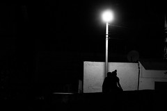 Manmade moon (Alec Ruiz Photo) Tags: street shadow blackandwhite white black love backlight night mexico alley couple streetlamp streetphotography romantic monterrey noisy nocturn