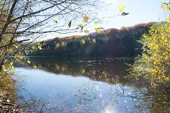 DSC_0233 (Pter_Szab) Tags: mtra matra hungary nature autumn colours mountains galyateto galyatet forest hiking nationalpark landscape