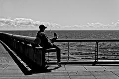 Riposo (Wal CanonEOS) Tags: riposo reposo repose paisaje landscape paysage scenario man hombre descansanso sentado mirando horizonte cielo sky agua water rio river flickr photo foto argentina argentinabsas bsas buenosaires caba capitalfederal ciudadautonoma ciudaddebuenosaires parquedelamemoria costaneracaba costanera argentinacostanera costaneranorte cabacostanera dia day canon eos rebelt3 canoneosrebelt3 blancoynegro blackandwhite byn bw blanco y negro monocromatico monocromatic monocromo sombra shadow calle callejeando calles street streets streetsbw strange candid candidstreet airelibre alairelibre paisajeargentino riodelaplata photography fotografia fotocallejera