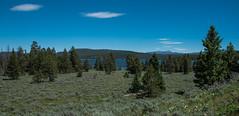 Meadow View - Hermitage Point - Colter Bay - Grand Teton National Park - Wyoming - 21 June 2016 (goatlockerguns) Tags: mountain view hermitage point colter bay grand teton national park wyoming forest trees tree creek lake jackson meadow usa unitedstatesofamerica west western nature natural nationalpark