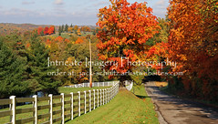 Fall in Amish Country 5841 (intricate_imagery-Jack F Schultz) Tags: jackschultzphotography intricateimageryphotography amishcountry fallcolor holmescounty southeasternohio whitefence cemetery