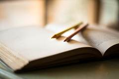 Keep It Simple (Captured Heart) Tags: pencil coloredpencils simple quietmoment book creativity art artistic