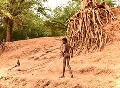 Riverside, Omo River (Rod Waddington) Tags: africa african afrika afrique ethiopia ethiopian ethnic etiopia ethnicity ethiopie etiopian thiopien omovalley omo omoriver riverside dassanech tribe traditional tribal culture cultural people valley valle tree roots boy swimmer