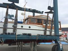 "IMG_9844 - Port Townsend WA - Shipyard - Classic Yacht Association - MV MARIAN II enroute Haven Boatworks (BlackShoe1) Tags: marianii lakeuniondrydockcorporation ludd 1928 wa washington washingtonstate wash pacificnorthwest pugetsound classicyachtassociation cya pacificnorthwestfleet classic httpportofptcom httpenjoyptcom ""quimper peninsula"" ""jefferson county"" ""east jefferson ""port townsend"" ""victorian seaport"" seaport porttownsendshipyard porttownsendboathaven portofporttownsend woodboat wooden boat travellift"