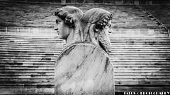 La juventud y la madurez, cada una con sus virtudes y sus defectos (TALOS300) Tags: sonya6000 sonyilce6000 sonyalpha6000 atenas athens grecia greece blancoynegro blackandwhite bw panathinaiko stadium