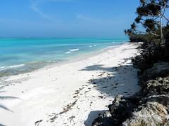 Zanzibar - spiaggia ancora inesplorata e selvaggia - nome sconosciuto (cash_mire1) Tags: spiaggia ancora inesplorata e nome sconosciuto