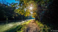 Premiers frimas sur le canal du midi (Shoot Enraw) Tags: 18200mmf3556 canaldumidi navigation automne aude trbes octobre