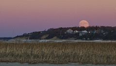 Super Moon Over Cape Cod (brucetopher) Tags: supermoon super moon beaver beavermoon fullmoon full moonrise water sky beach sea marsh saltmarsh pink blue orange yellow headland seagrass grass beauty peace peacefull sunset rise skies evening twilight stunning captivating mesmerizing awe