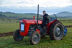 (Zak355) Tags: ploughingmatch rothesay bute isleofbute tractors old vintage scotland scottish masseyferguson