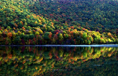Endless Nature (Captions by Nica... (Fieger Photography)) Tags: reflections reflection water landscape lake trees tree branches nature outdoor serene mountain mountainside fog forest fall foliage autumn quebec canada