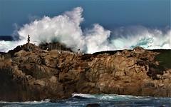 Nov17Image5081 (Michael T. Morales) Tags: waves pacificgrove ptpinos rockformation montereybay ocean mar sea