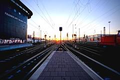go west (Staufen39) Tags: germany frankfurt light abendsonne sonnenuntergang gleise bahnhof sunset tracks trains