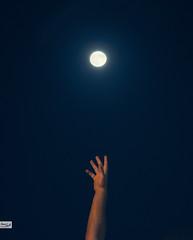 The Reach (Hossam Ghaith) Tags: 500px bokeh portrait canon people photoshop lightroom moon light nightscape raw color beauty egypt vsco alexandria shadow hand dslr astrophotography photograph retouch dream eos 6d film photooftheday super reach hossam ghaith ef 85mm f18 usm