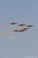 201001_ALAIN_DUE_47 (weflyteam) Tags: wefly weflyteam baroni rotti piloti disabili fly synthesis texan airshow al ain emirati arabi uae