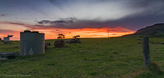 Sunset after a storm (Photography By Tara Gowen) Tags: sunset sky australia yarrahapinni taragowen photographybytaragowen nikon nsw