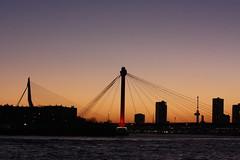 two bridges skyline 2 (eLeM-O) Tags: rotterdam skyline sunset 2016 december lookingsouth bridges nighttime euromast willemsbridge erasmusbridge