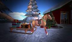 Husky Puppy Riding A Xmas Pony! (ReignShadow) Tags: firestorm secondlife snow cute xmas christmas holiday happy horse pony rocking sledge tree santa dog puppy husky piebald