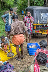 Mobile Fish Market (gecko47) Tags: market seafood fish fresh sale mobile hawkers weighing kerala india periyarnationalparkwildlifesanctuary commerce food customers scales