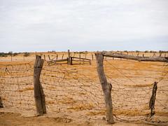 Bronco Yards on the Warracoota Circuit, Diamantina National Park