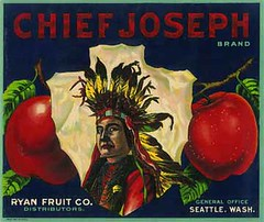 """Chief Joseph2 • <a style=""""font-size:0.8em;"""" href=""""http://www.flickr.com/photos/136320455@N08/21471717765/"""" target=""""_blank"""">View on Flickr</a>"""