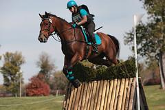 Kentucky Horse Park colors (Tackshots) Tags: horse jumping lexington crosscountry riding eventing horsetrials kentuckyhorsepark teamchallenge hagyard