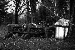 Tractors in retirement (GSankary) Tags: fall farm farms ruralscenes farmscenes