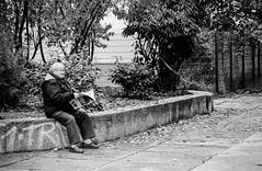 News (JuliSonne) Tags: people news lesen strasse streetphotography mann zeitung altermann presse streetfotografie
