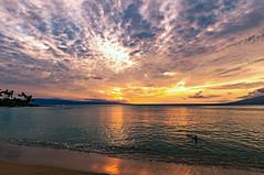 Last Swim DSC_0898 (Zeta_Ori) Tags: sunset beach clouds swim twilight swimmer lanai molokai napili mackerelsky napilibay d90 napilikaibeachresort auauchannel afsnikkor1424mmf28ged