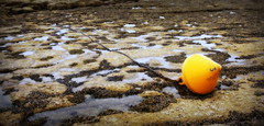 3 (roberke) Tags: france beach nature water yellow strand natuur frankrijk geel nordpasdecalais boei ketting ambleteuse opaalkust